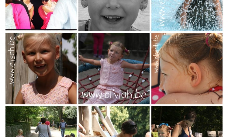 IMG_0080-COLLAGE